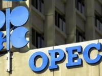 ОПЕК прогнозирует, что к концу года цена на нефть вновь вырастет